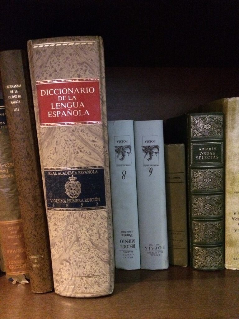 diccionario2